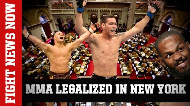 mma-legalized-in-new-york-on-fig-730x410